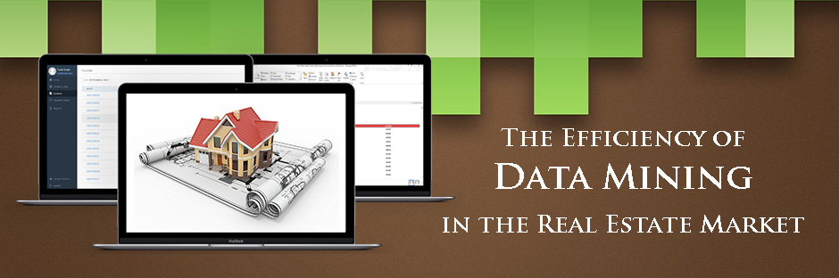 The Efficiency of Data Mining in the Real Estate Market