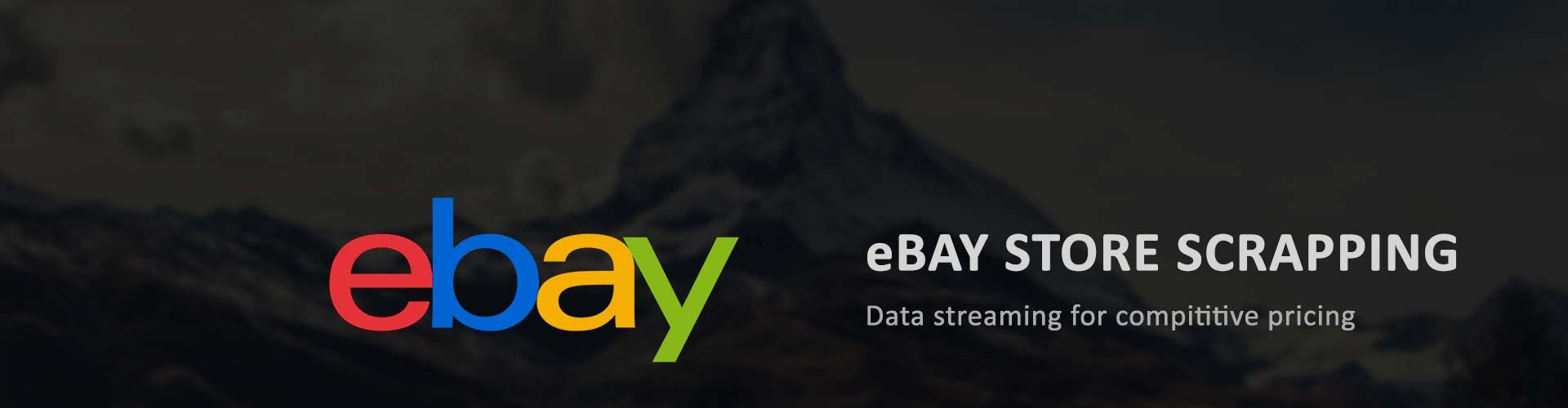 ebay-store-screpping-loginworks