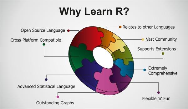 why learn R